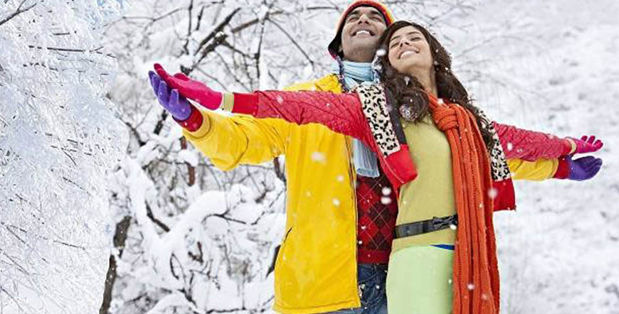 Hotel Rajhans Manali Tour & hotel booking packages